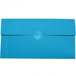 """3/4""""  Clear Circle  Mailing  Labels"""