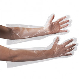 "Clear  Poly  Gloves 18""  Elbow  Length"